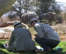 Alison Nicholls gives tuition during the 2013 Africa Geographic Art Safari in South Africa