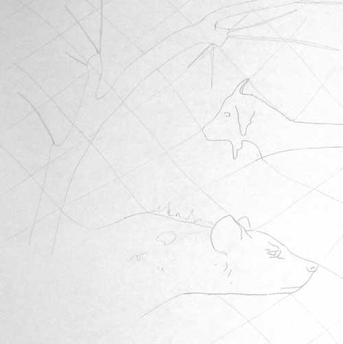 Living Walls drawing detail by Alison Nicholls © 2014
