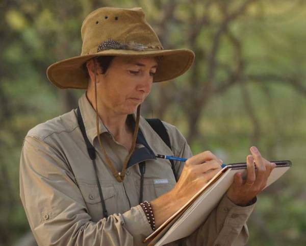 Alison Nicholls sketching in Botswana.  Photo by Nigel Nicholls