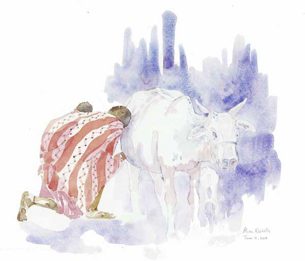 Mother's Milk Field Sketch by Alison Nicholls © 2014
