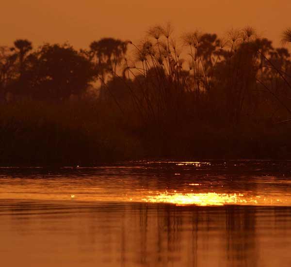 Okavango Delta, Botswana,photo by Nigel Nicholls