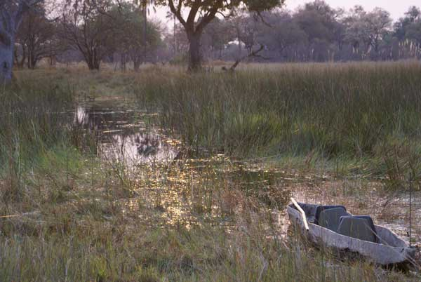 Okavango Delta, Botswana,photo by Nigel Nicholls