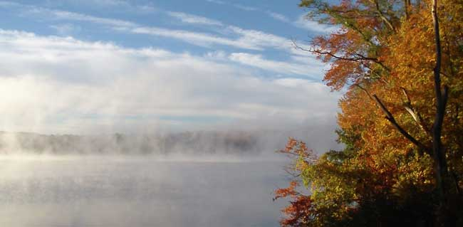 Lake Mist, South Salem New York by Alison Nicholls
