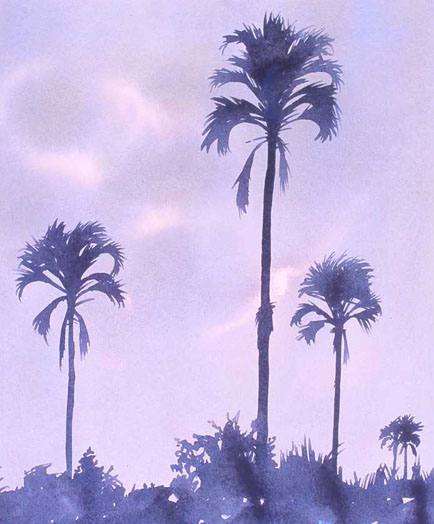 Okavango Palms